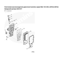 Прокладка теплообменника двигателя Cummins -- Камминз  ISBE/ 4/6 BT 2831077, фото 2